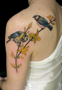 Beautiful realistic bird tattoo on shoulder blade
