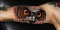 Cool colorful owl tattoo by Carlox Angarita
