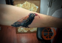 Crow tattoo on the hand by koraykaragozler