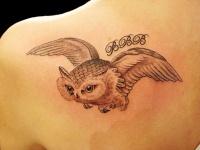 Night owl tattoo