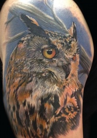 Owl bird tattoo on his shoulder